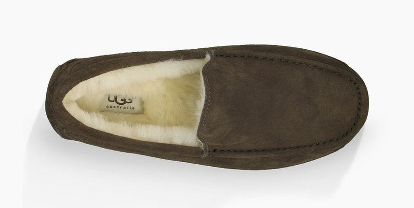 Ugg Ascot Slipper Top