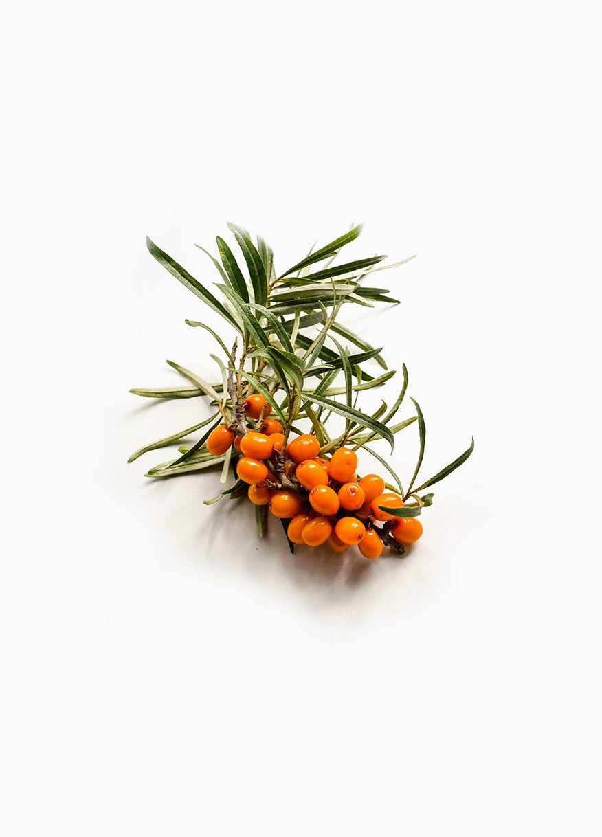 Sea Buckthorn Juice