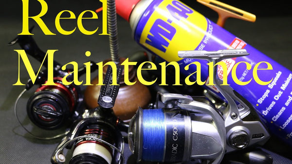 Maintenance of your Reels.