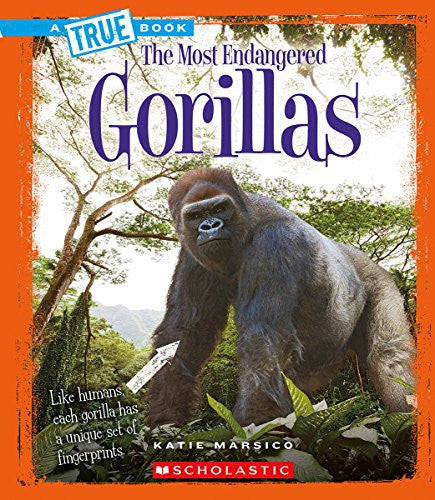 Gorillas (True Book the Most Endangered)