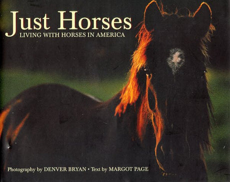 Just Horses (Just (Willow Creek))