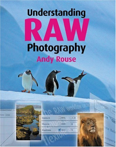 Understanding RAW Photography
