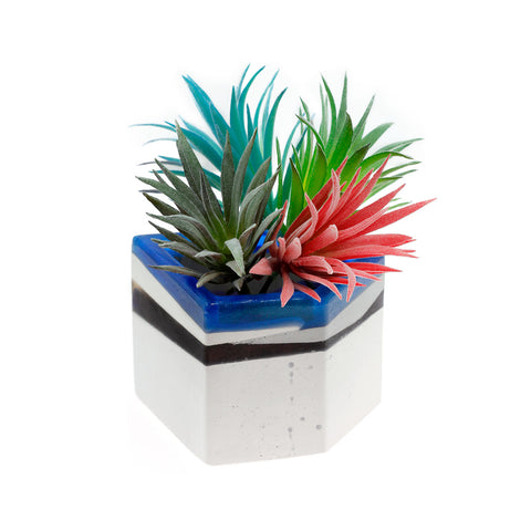 Striking Spikes | O Yeah Gifts!