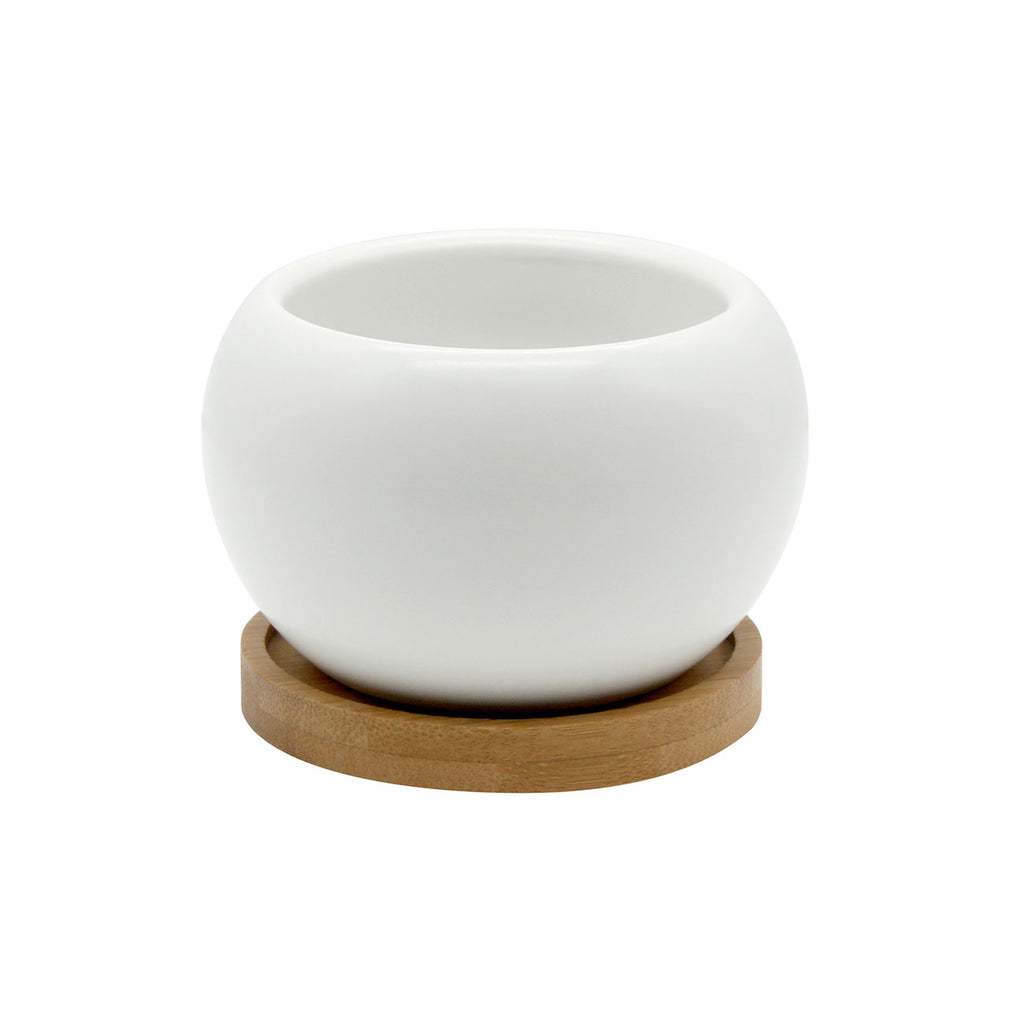 Planter & Bamboo Saucer - White | O Yeah Gifts!