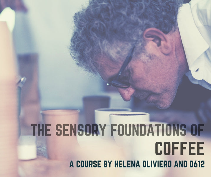 SPECIALTY COFFEE COURSE