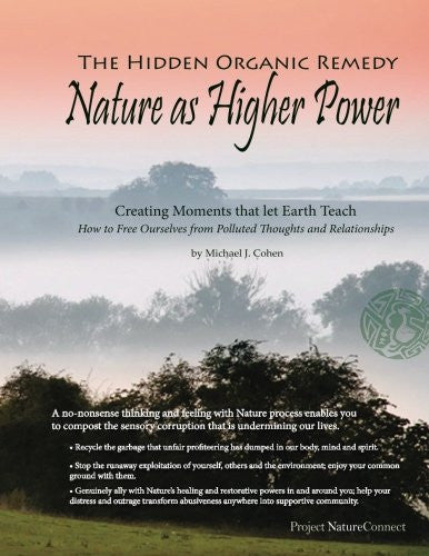 The Hidden Organic Remedy: Nature As Higher Power: Creating Moments That Let Earth Teach