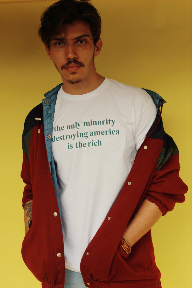THE ONLY MINORITY DESTROYING AMERICA IS THE RICH