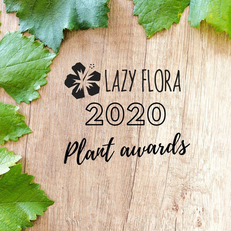 Lazy Flora plant awards of 2020
