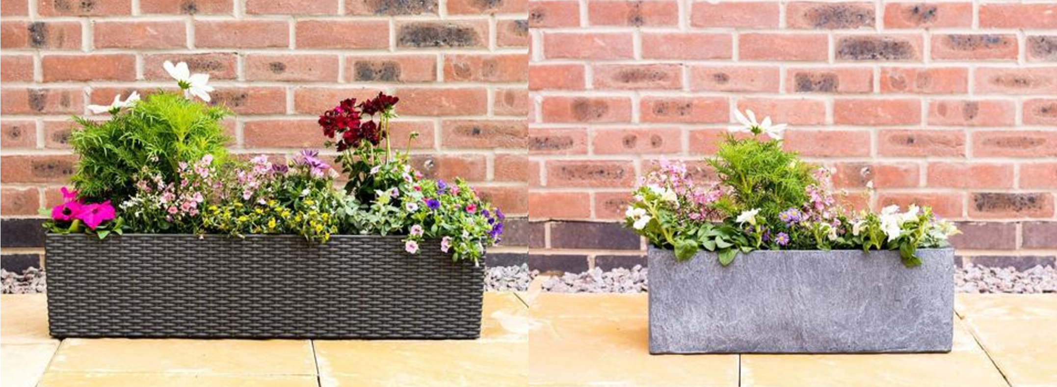 Lazy Flora container selection