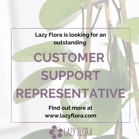 Lazy Flora is looking for an outstanding customer support representative to join the team!
