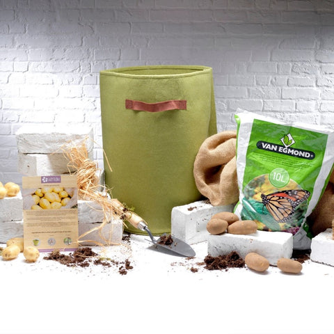 Potato growing kit