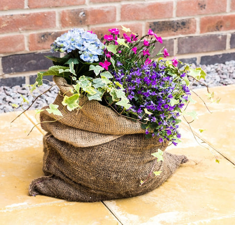 Hessian sack planter