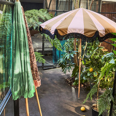 retro style parasol in patio with fruit trees