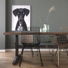 Art work of dog on wall in dining room with metal wire chair by hk living