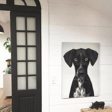 modern farmhouse style wall with ship lap and photo of dog in plexiglass