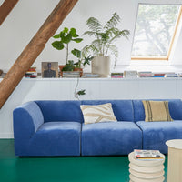 royal blue velvet sofa with cream colored earthenware planter and plants