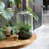 giant glass vase on teak wooden table surrounded by plants and ceramic cups