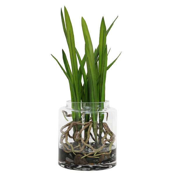 Artificial rooted cymbidium orchid in glass vase
