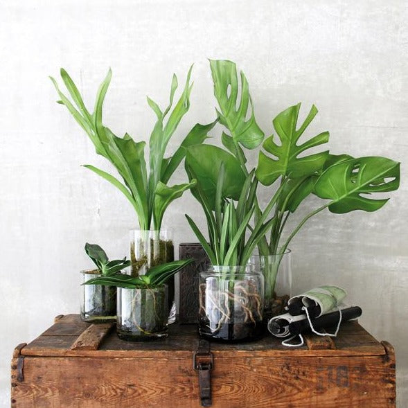 group of artificial plants in glass pots for urban jungle effect