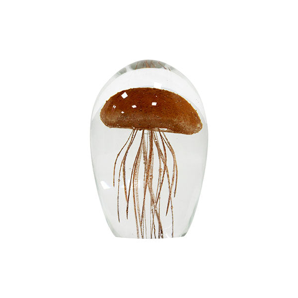 Jelly fish coral in glass art object