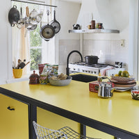 kitchen with yellow countertop and art panel on hood