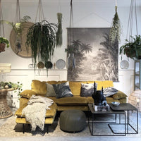 living room with velvet sofa and nesting table set and lots of hanging plants