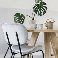 velvet grey dining chair and wooden table with plant