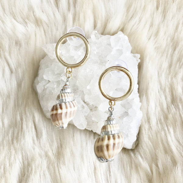 Gorgeous Shell Earrings