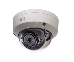 4K H.265 IP HD Dome Security Camera (QCN8096D)