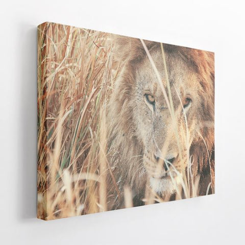 "Acoustic Art | 1.5"" Acoustic Art Panel, Animals J"