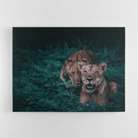 "Acoustic Art | 1.5"" Acoustic Art Panel, Animals C"