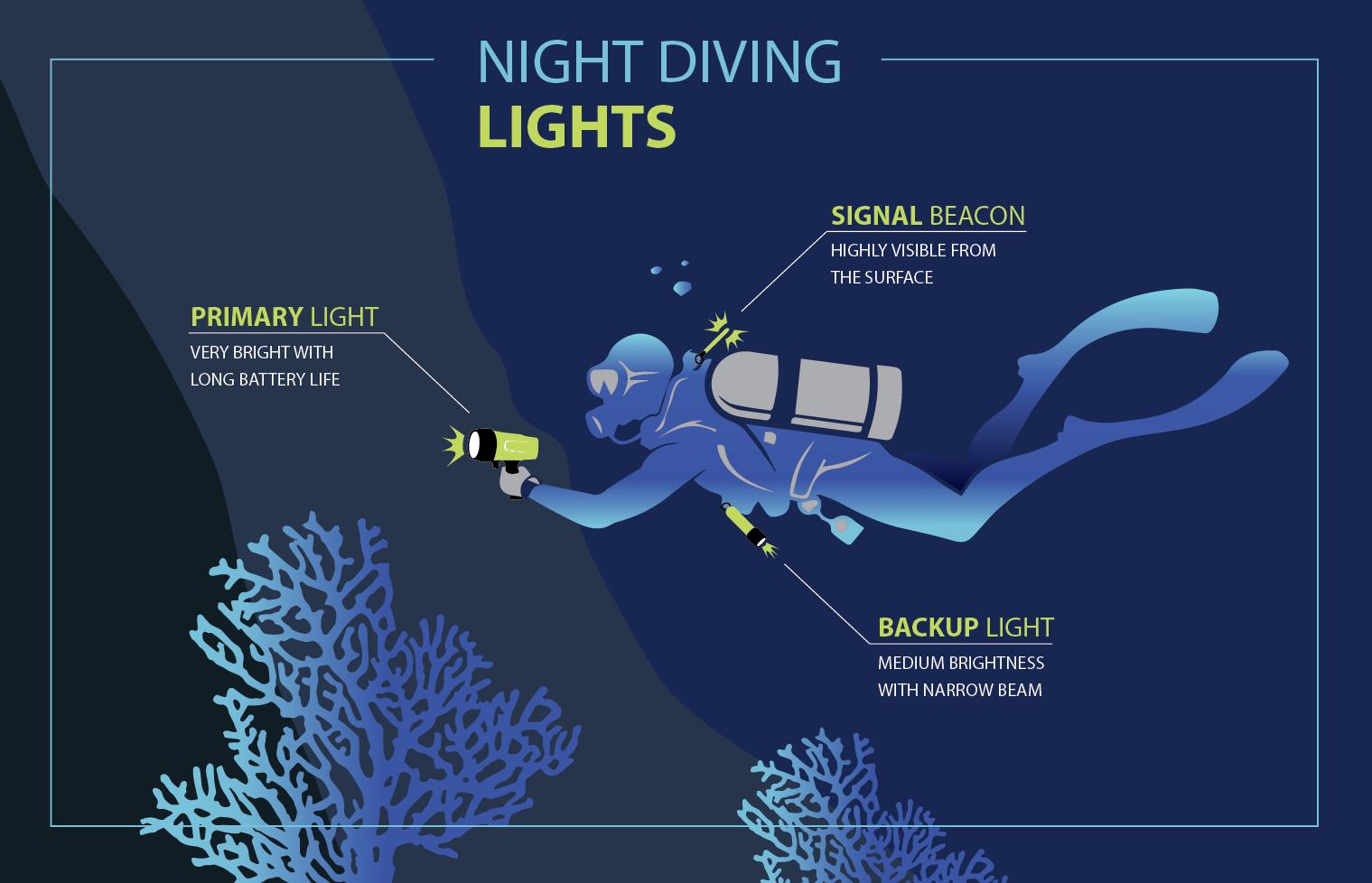 Night Diving Lights