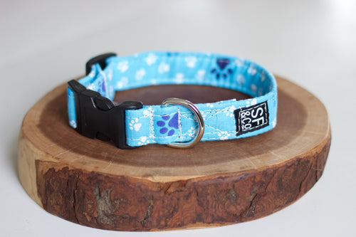 Blue Paws Collar