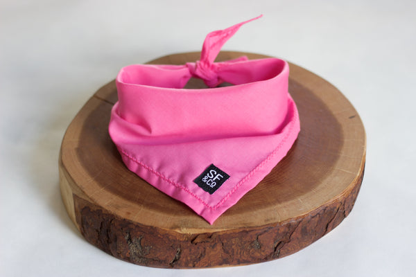 Hot Pink Bandana (only available in S)