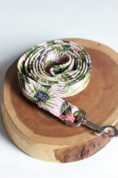 Pink Pineapple Leash
