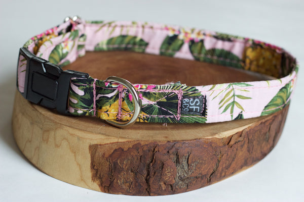 Pink Pineapple Collar