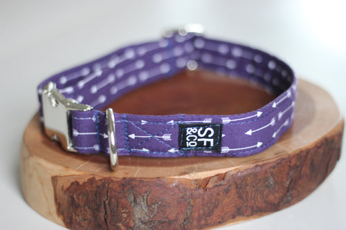 Purple Arrow Collar