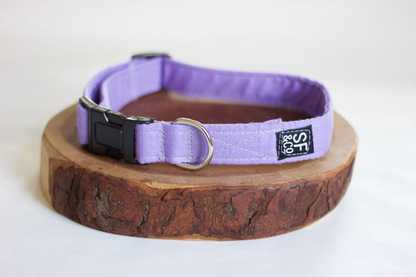 Lavender Collar (only available in XS)