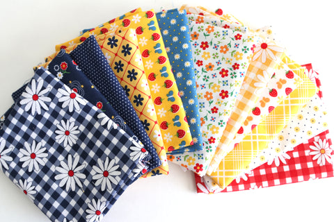 Gingham Girls Fat Quarter Bundle