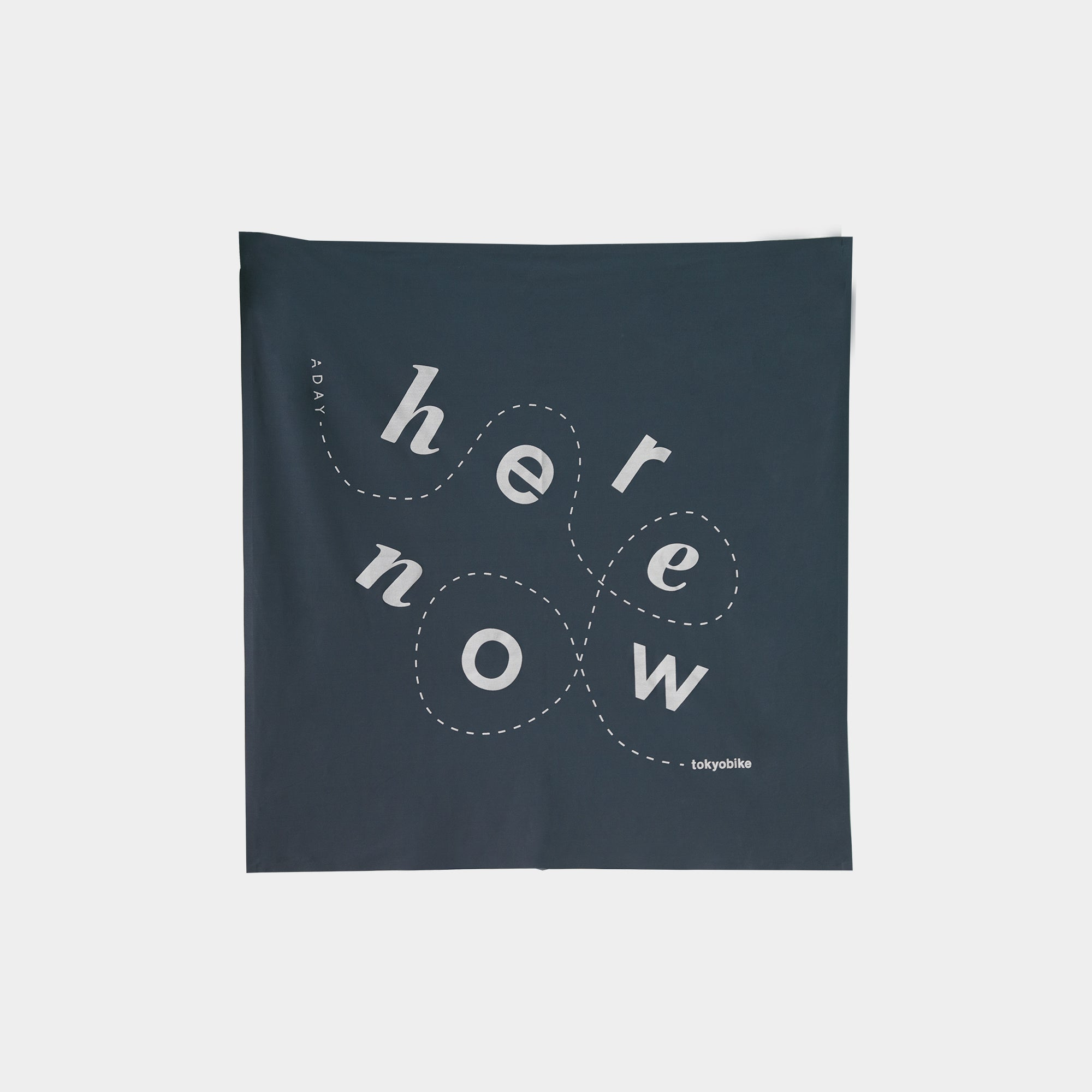 Here. Now. Bandana, Navy