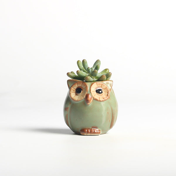 Owl Flower Pot,artistic bae review, artisticbae reviews, artistic bae reviews, artsy clothing  - Artistic Bae