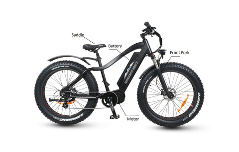 BackCountry eBike Mule