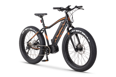 Rogue Wave Fat Tire ebike