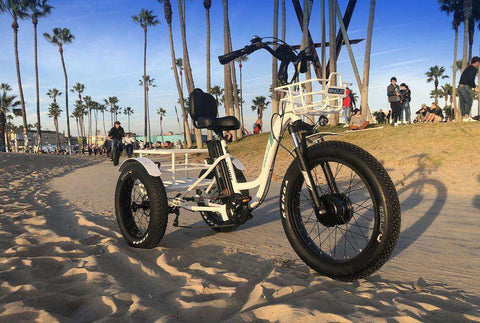EMOJO Caddy PRO Fat Tire Trike