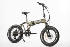 BackCountry eBikes Stalker 750W