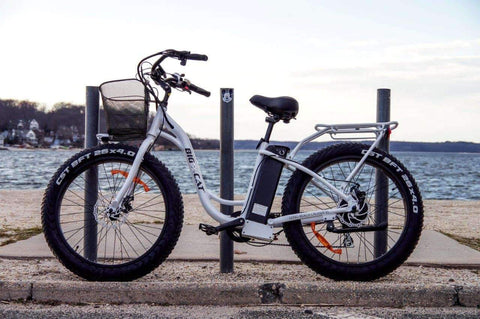 image of Big Cat Long Beach Cruiser XL 500 Electric Bike on waterfront pier facing left side profile