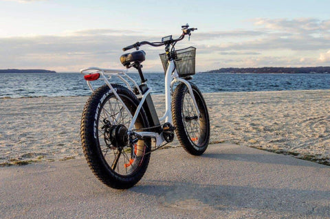 image of Big Cat Long Beach Cruiser XL 500 Electric Bike on beach road rear facing profile
