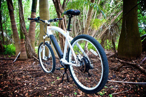 image of Prodecotech Phantom X RS Electric Mountain Bike in the woods color polar white gloss