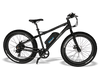 Image of Emojo Wildcat Electric Mountain Bike