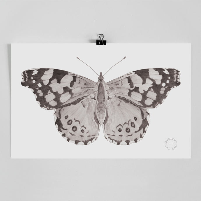 Sarah Hammond - Butterfly Limited Edition Print